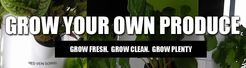 grow your own produce - detroit -